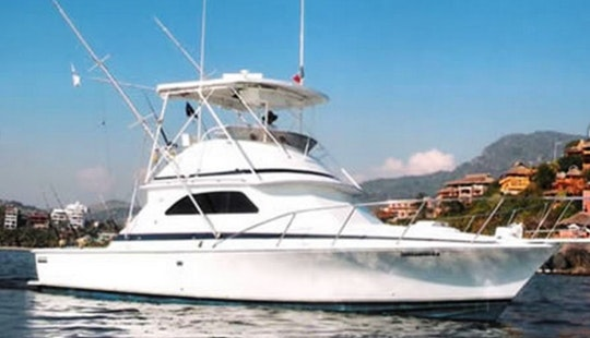 Private Orion Sport Fishing Charter In Ixtapa