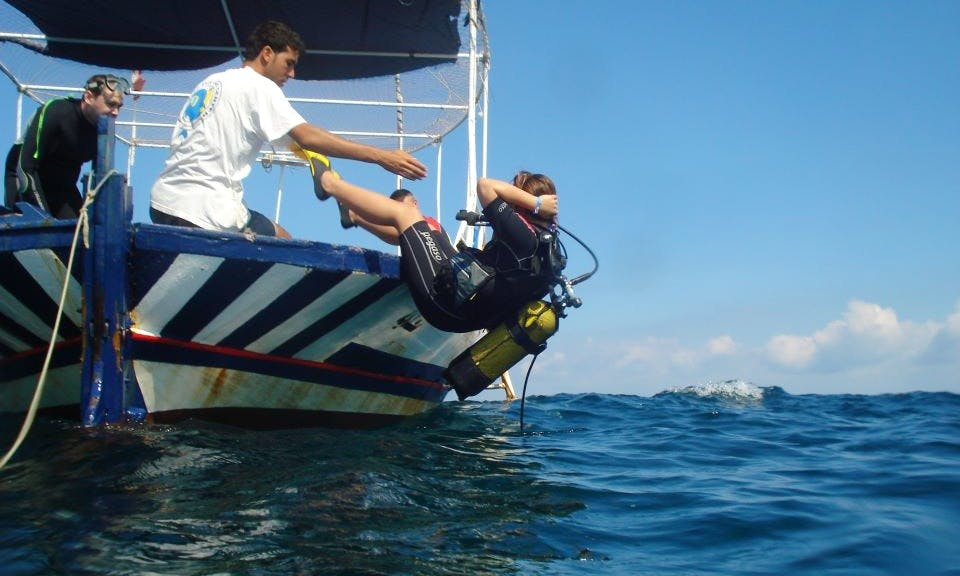 Diving Adventures on Saadia in Tunis