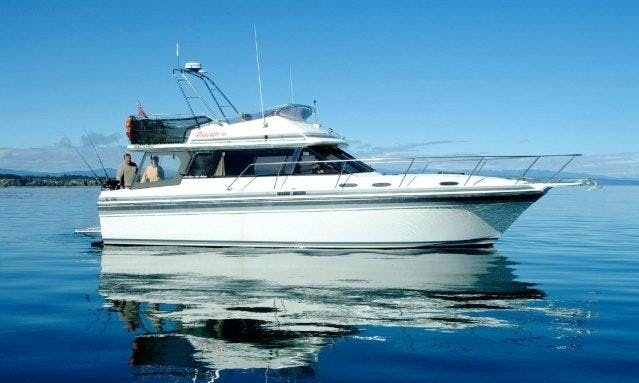 36' Bravado-3 Trout Charter & Cruising in Lake Taupo