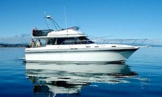 36' Bravado-3 Trout Charter & Cruising in Lake Taupo