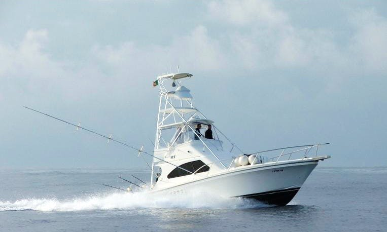 Luxury ''Brasilia 40'' Sport Fisherman Charter in Portugal