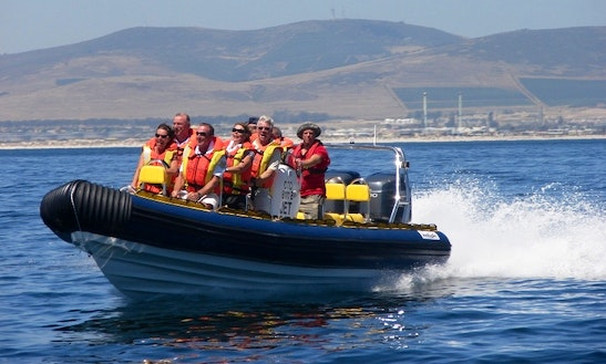 Jet Boat Trip In Cape Town