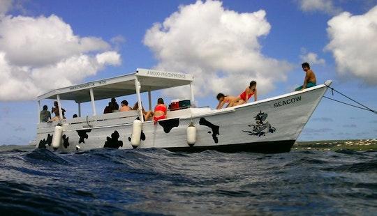 Guided Snorkel Trip  Boat In Kralendijk