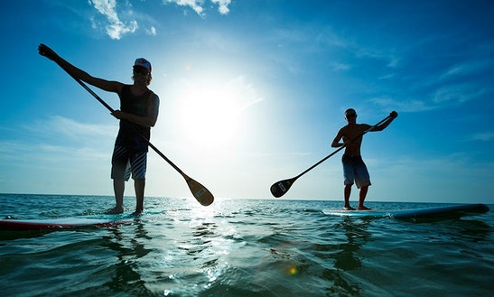 Stand Up Paddle Boards Rental In Ventura