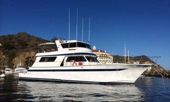 Paradiso Yacht Parties & Fishing Charter In Newport Beach