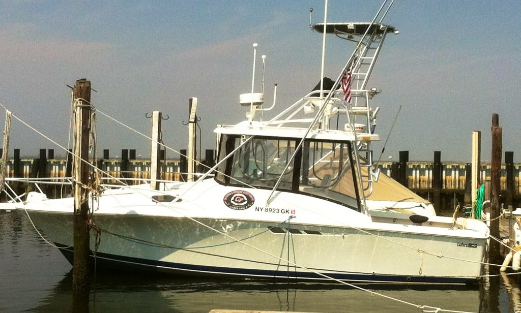 Fishing Charters, Sunset and Nature Cruises from Point Lookout