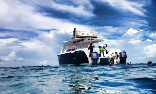 Power Catamaran Charter In Suzy Turn, Turks And Caicos Islands