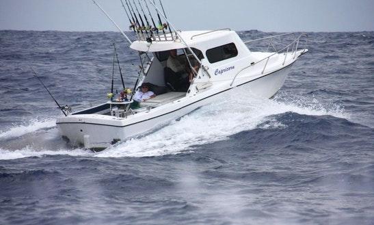 Offshore Fishing Boat In Buddina, Queensland