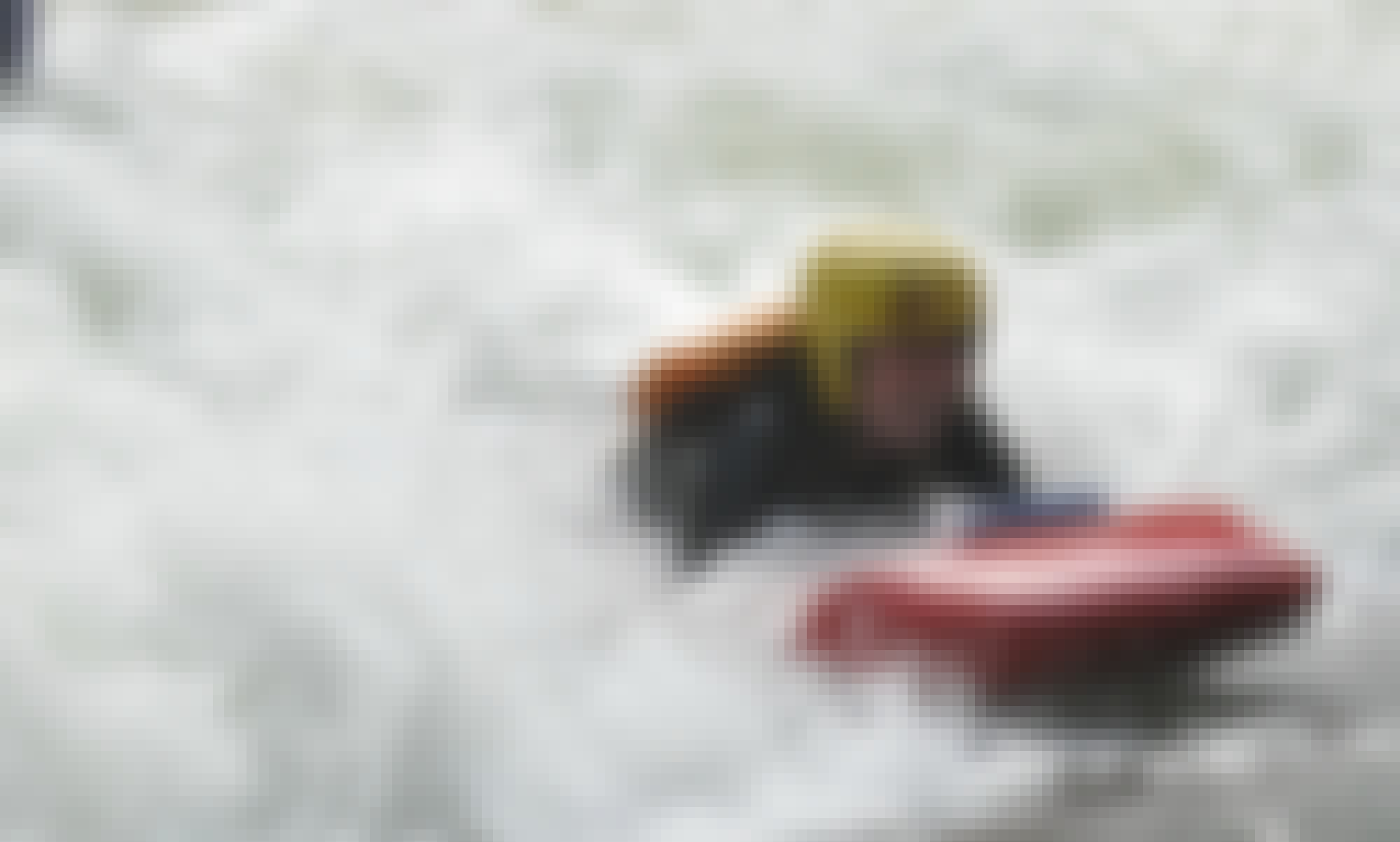 White Water Sledging Trips in Tikitere