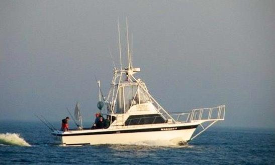 30 39 sport fisherman charter in aquinnah massachusetts for Fishing charters falmouth ma