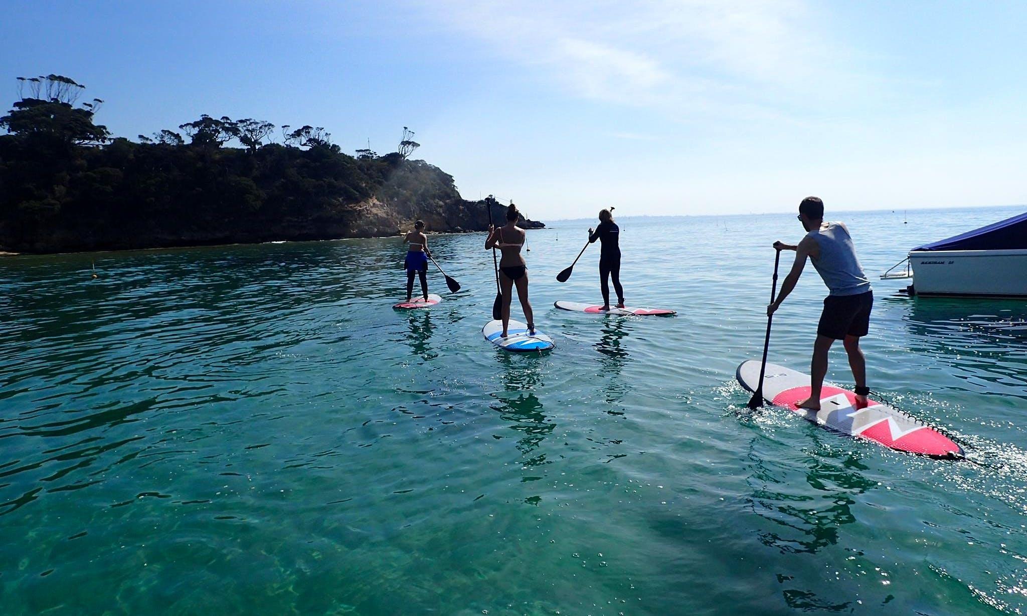 SUP Rental in Portsea, Australia