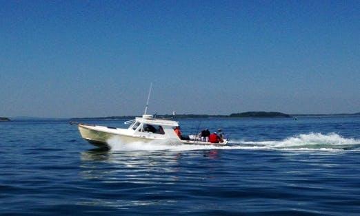 """30ft """"Fishing Frenzy"""" Sportfisherman Boat Charter in Boston, Massachusetts"""