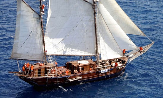 Traditional Sailing Yacht Palma In Düsseldorf