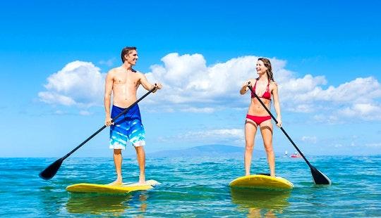 Paddleboard Charter In Miami, Florida
