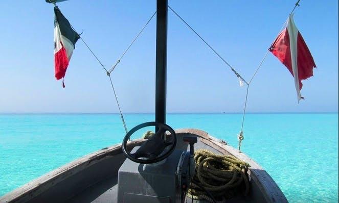 Enjoy Great Dive Vacation In Playa del Carmen, Mexico