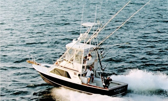 32' Blackfin Sport Fisherman In Port Aransas, Texas United States