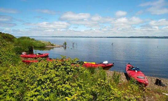 Sea Kayak Trip On La Poza Lagoon, Chile