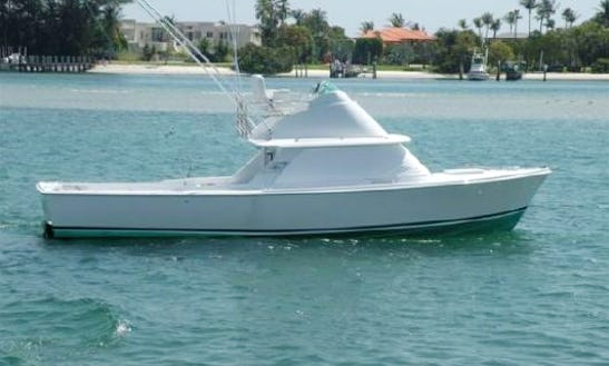 31' Sport Fisherman Charter In Cozumel, Mexico