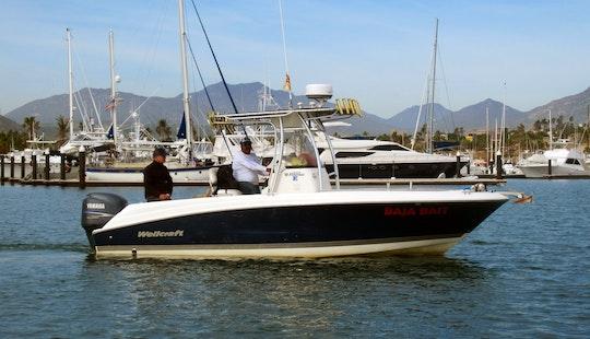 Fishing Charter On The Baja Bait Boat In San José Del Cabo