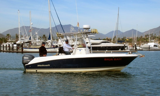 Fishing Charter On The Baja Bait Boat In San José Del Cabo