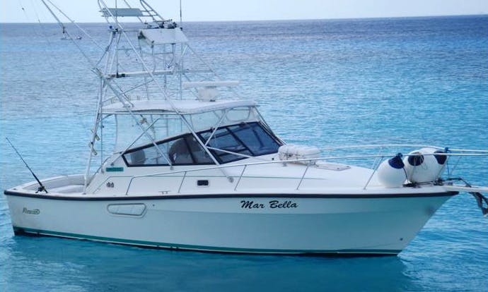 "Fishing Charter a 35f ""Mar Bella"" Yacht in San Miguel, Mexico"