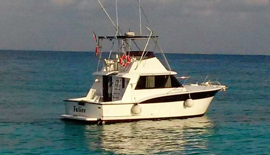 38' Sport Fisherman Charter In San Miguel, Mexico