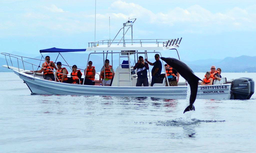 Exciting Whale Watching Tours in Mazatlán, Mexico for 10 person!