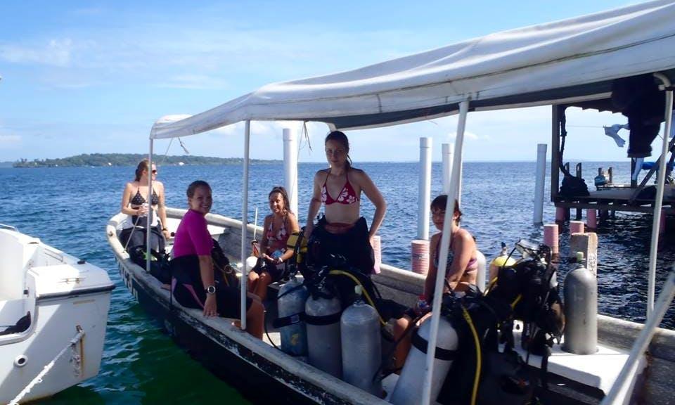 Diving In Bocas del Toro
