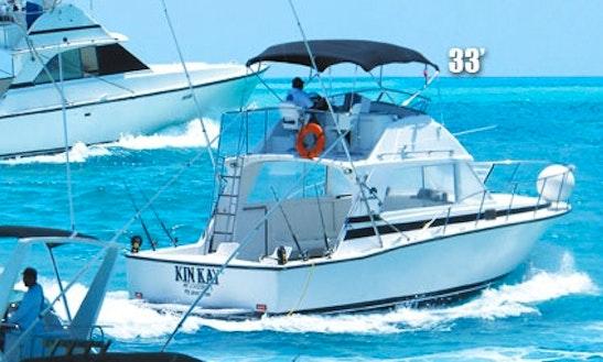 Fishing charters in cancun for Cancun fishing charters