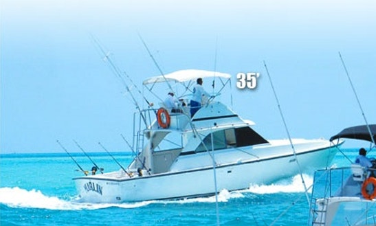 Fishing charters in cancun for Cancun fishing trips