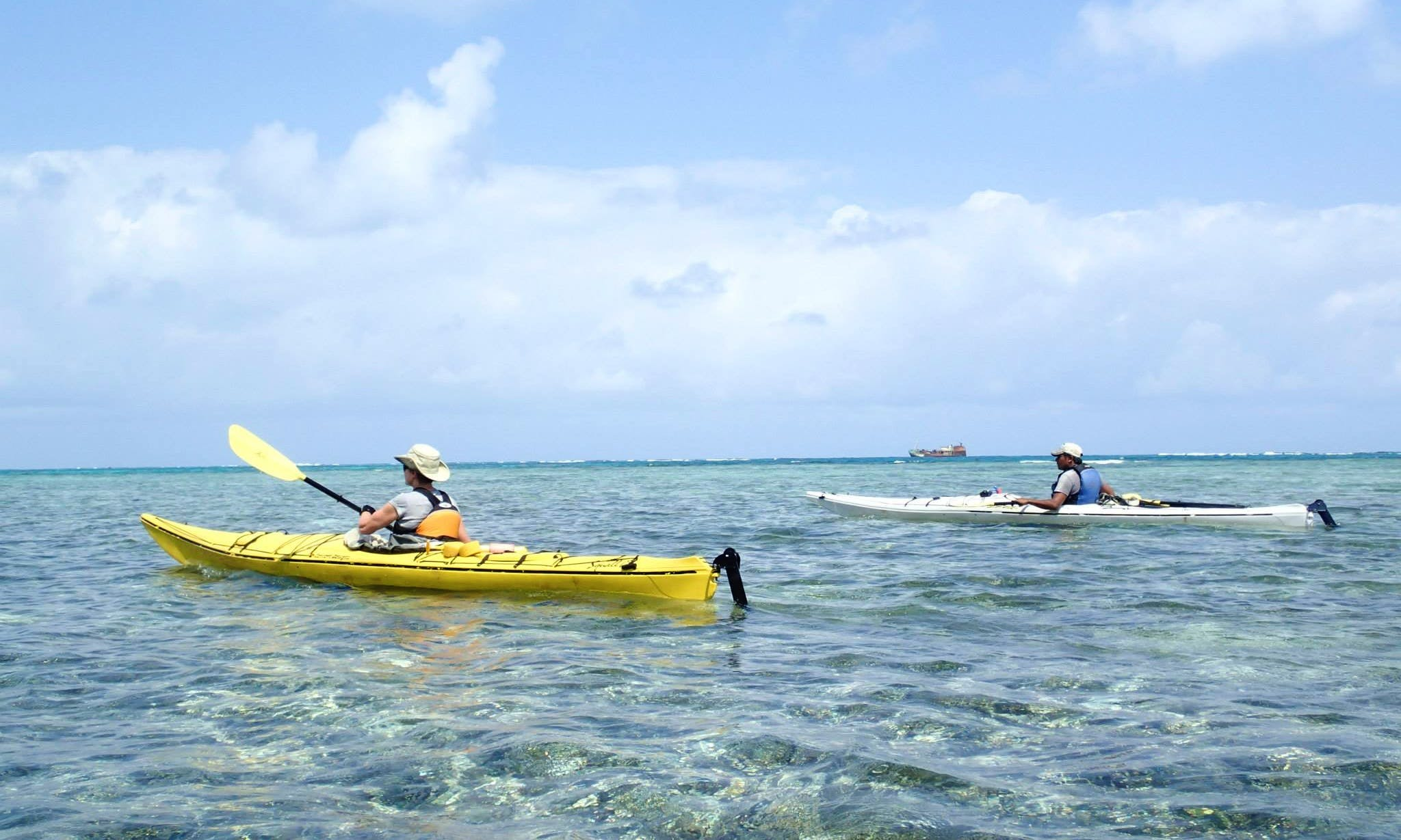 Kayak Guided Tours in City of Panama