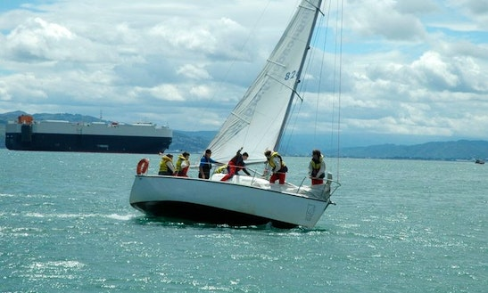 School Sailing Courses In Wellington, New Zealand