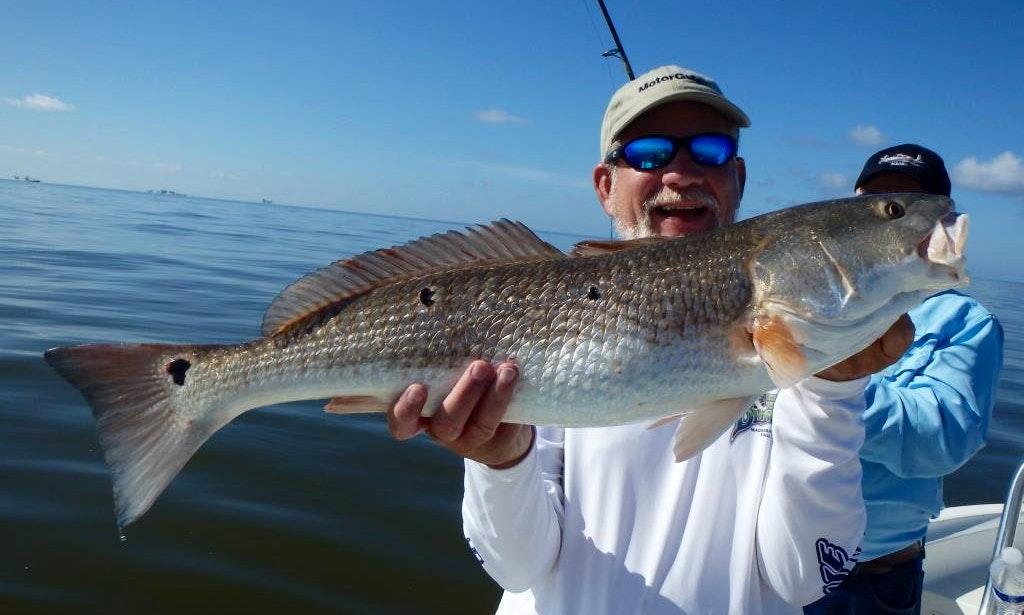 Enjoy fishing in palm harbor florida with captain john for John s pass fishing charters
