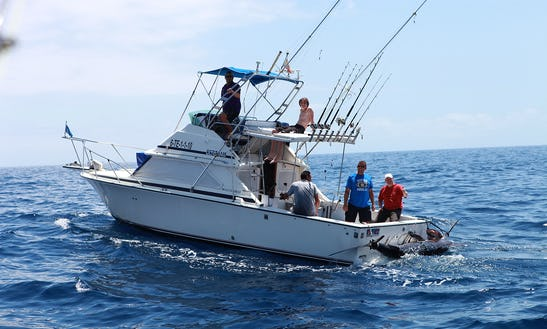 Fishing Trip With Captain Stephan In Costa Adeje, Spain