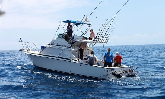 Sport Fishing Trips On The