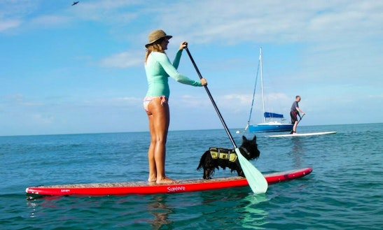 Stand Up Paddle Tours In Puntas