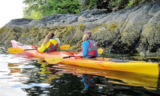 Kayak Tours In Vieques, Puerto Rico