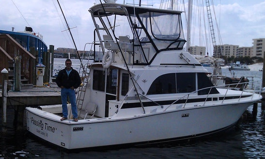 37' Bertram Sport Fisherman In Destin Florida, United States