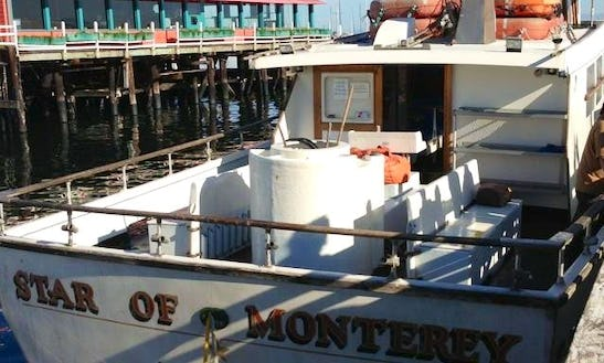 Deep Sea Fishing Trip With Highly Qualified Skippers In Monterey, California