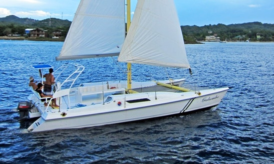 Private Sailing & Snorkel Trips In Roatan