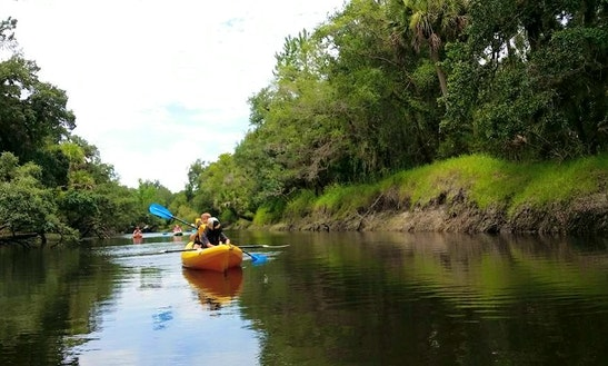 Guided Kayak Tours In Titusville