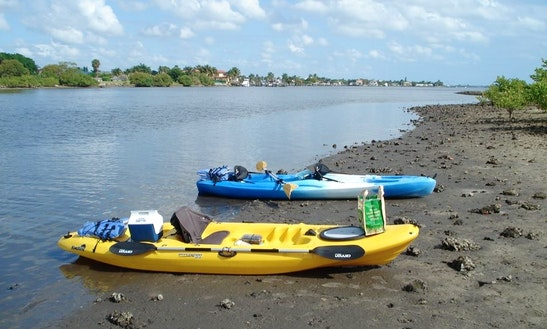 Full Moon Kayak Tour In Lake Worth Lagoon