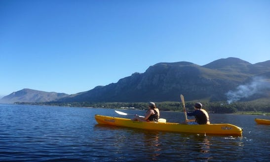 Sea Kayaking In Hermanus