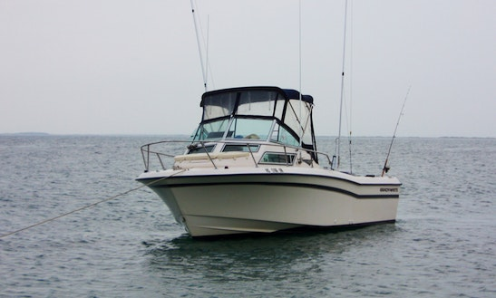 22' Grady White Fishing Boat In Mount Pleasant, South Carolina United States