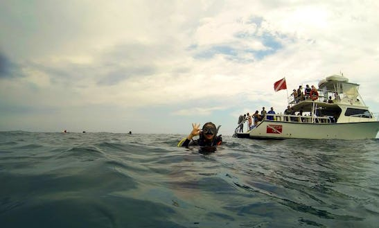 Diving Charter On 46' Boat In Miami, Florida