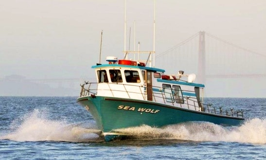 Fishing Adventure In The San Francisco Bay Aboard 50' Fishing Charter