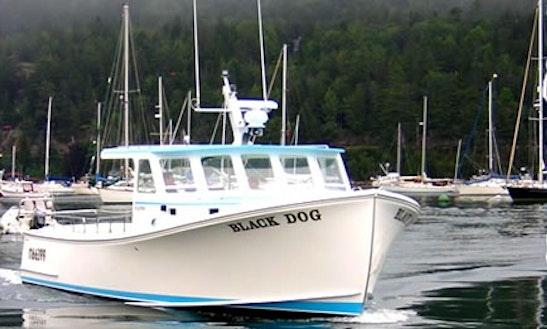 46 39 Right Hook Ii Head Boat Fishing Charter In Riviera