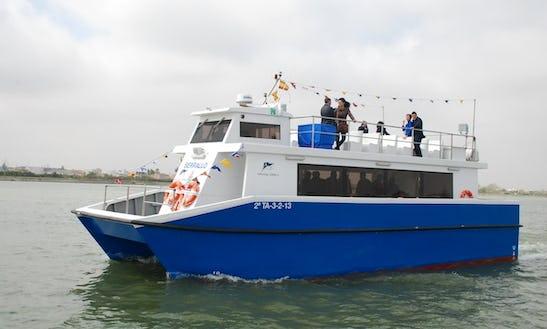 49' Catamaran Cruises In Ebro Delta, Spain