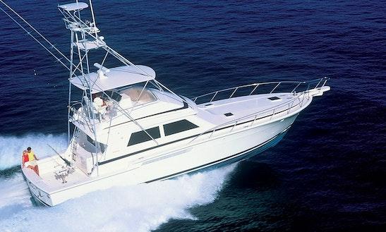 Bertram Sport Fishing Trips In Saint Lucia