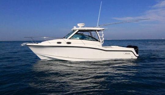 35 Ft Boston Whaler Boat Charter In Saint Lucia